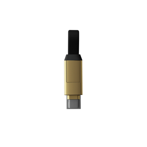 inCharge 6 ( Saturn Gold)